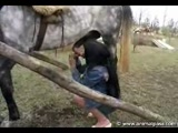 Woman horse fuck video